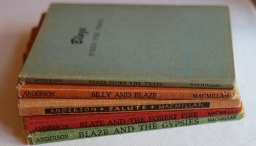 Billy and Blaze Series