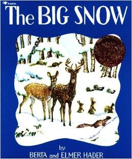 The Big Snow Book