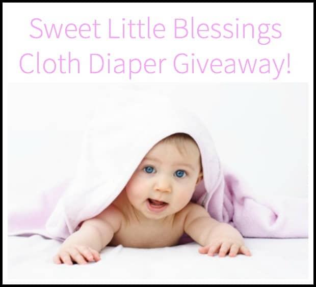 Sweet Little Blessings Cloth Diaper Giveaway!