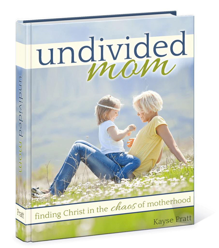 Undivided_Mom3D-906x1024