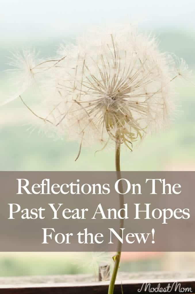 Reflections on the past year and hopes for the new year!